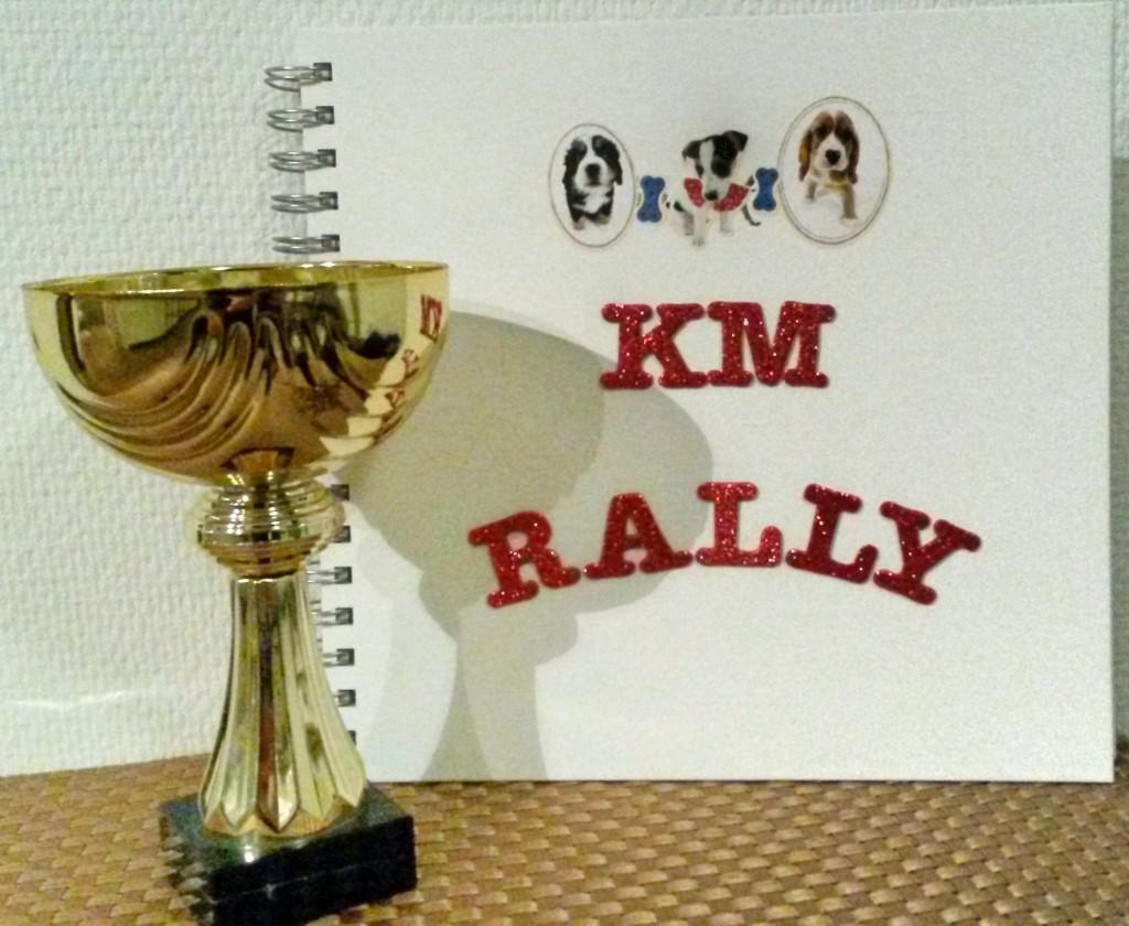 KM_rally
